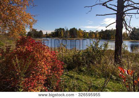 Seney National Wildlife Refuge. Wetlands And Autumn Foliage At The Seney National Wildlife Refuge In