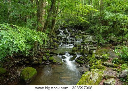 Smoky Mountain Stream. Smoky Mountain Stream Rushes Through The Lush Forest Of The Great Smoky Mount