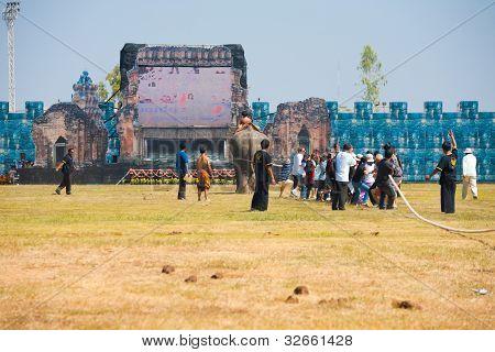 Elephant Audience Tug Of War