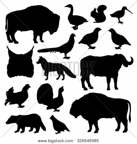 Wild Animals And Birds Monochrome Vector Silhouettes. Lynx And Buffalo, Forest Fox And Bison, Woodco