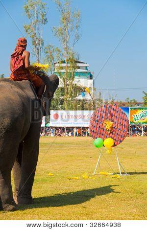 Elephant Playing Darts Balloons Rear