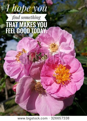 Inspirational Motivational Quote - I Hope You Find Something That Makes You Feel Good Today. With Be