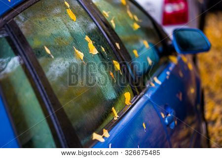 Wet Ultramarine Blue Car Side With Autumn Leaves And Selective Focus
