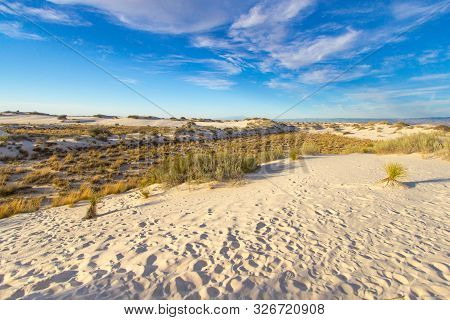 poster of Barren Desert Wilderness. Vast desert wilderness landscape of the American Southwest on federal owned lands in New Mexico