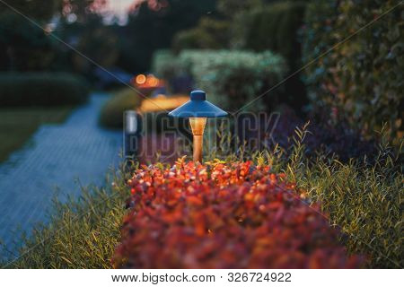 Decorative Small Solar Garden Light, Lanterns In Flower Bed In Autumn Red Foliage. Garden Design. So