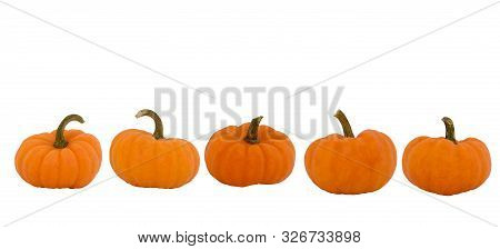 Five Halloween Pumpkins Isolated On White Background. Whole Pumpkins From Different Shape. Banner Wi