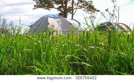 Tourist Tents On A Green Meadow. Focus In The Foreground.