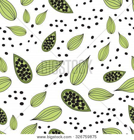 Cardamom Spice. Vector Seamless Pattern Of Cardamom. Culinary Template. Food Design Element.