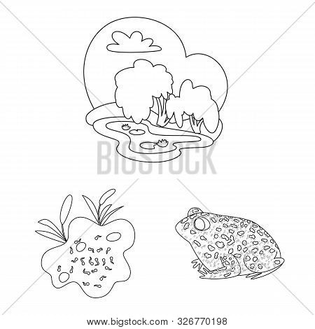 Vector Illustration Of Amphibian And Animal Sign. Collection Of Amphibian And Nature Stock Vector Il