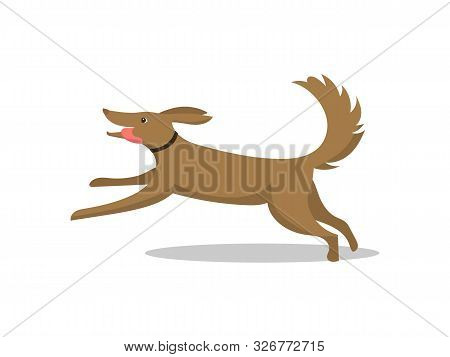 Pet Dog Running Breed With Tongue Isolated Vector. Mammal Wearing Collar On Neck, Happy And Friendly