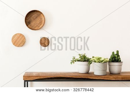Stylish Scandinavian Room Interior With Design Wooden Console, Rings On The Wall And Beautiful Compo