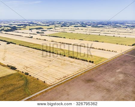 Autumn Fields In The Altai Territory. The View From The Height. Harvesting Wheat In The Field. Hayfi