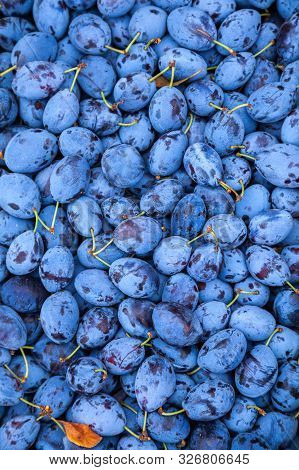 Plums In The Market. Food Photo Of Fruit Plums. Textures Of Fresh Blue Plums. Image Fruit Product Bl