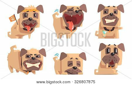 Cute Pug Dog With Various Emotions Set, Funny Animal Cartoon Character In Different Situations Vecto
