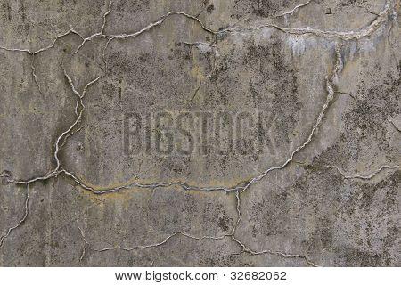 Vintage Concrete Leaching Calcium