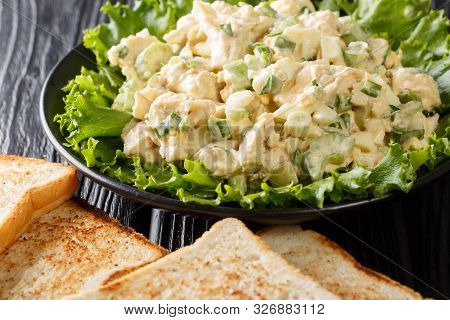 American Chicken Salad With Celery, Eggs And Onions Seasoned With Mayonnaise Close-up On A Plate. Ho