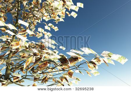 50 And 100 Euro Bills Instead Of The Leaves