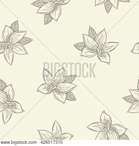 Engraved Vanilla Flowers In Vintage Style Seamless Pattern For Background, Backdrop, Wrapping Paper,