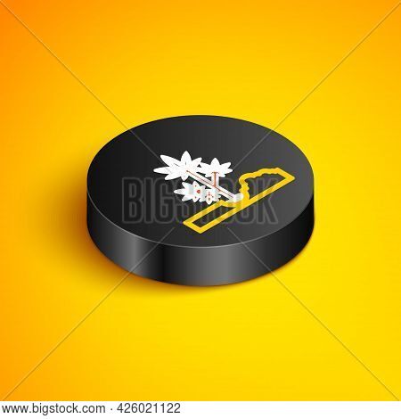 Isometric Line Planting Marijuana Or Cannabis Plant In The Ground Icon Isolated On Yellow Background