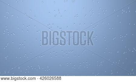 Rain Drops Isolate On Black Background For Designer. 3D Image. Large Transparent Blue Raindrops Free
