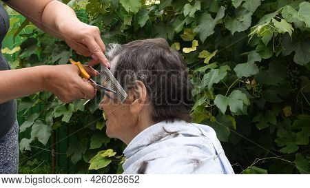 Woman Hands Trim Hair On Temple Of Senior Person With Half Gray Haired Short Haircut. Female Hands H