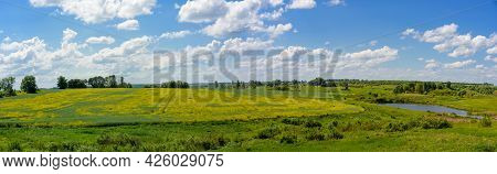 Panorama Of Grassland With Yellow Flowers, Field, Meadow, Lake And Green Trees.
