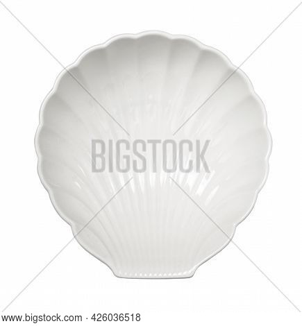 Decorative Porcelain Shell Plate, Seafood Dishes Isolated On White Background