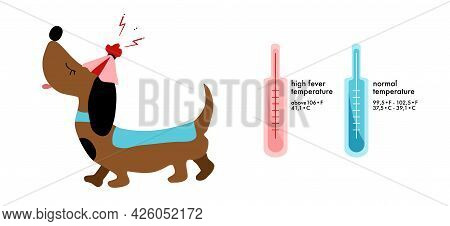 Dog`s Fever Symptoms.infographic Icons With Thermometer.high Temperature.cooling Compress.canine Hea