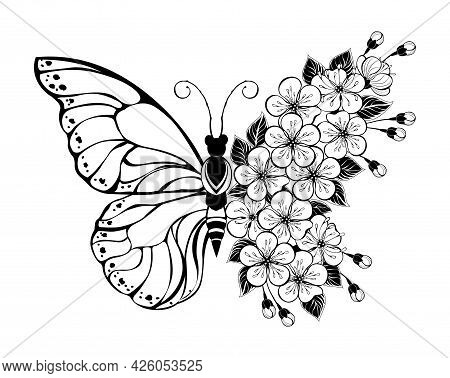 Flower Arrangement Of Outline Butterfly With Blooming Sakura On White Background. Tattoo Style.