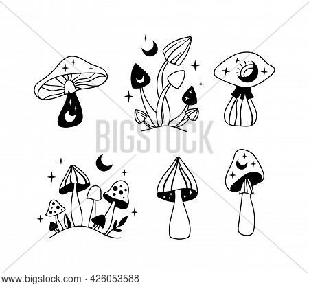 Mystical Mushrooms Isolated Clipart Set, Magic Line Celestial Mushroom, Moon And Stars, Witchy Esote