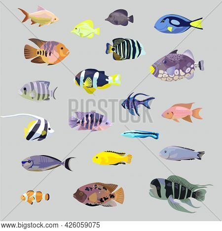 Big Set Of Isolated Realistic Tropical Sea Coral Aquarium Fishes.