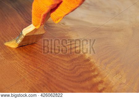 Painting A Wooden Surface With Varnish, Hand In Glove With Brush On An Oak Board, Housework, Copy Sp