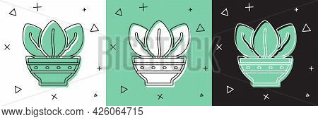 Set Plant In Pot Icon Isolated On White And Green, Black Background. Plant Growing In A Pot. Potted