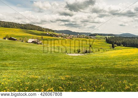 Farm Houses And Flower Meadow With View Of The Village Of Breitnau In The Black Forest, Baden-wuertt