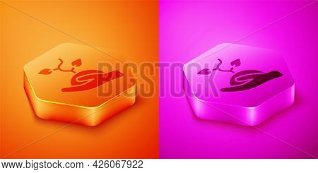 Isometric Volunteer Team Planting Trees Icon Isolated On Orange And Pink Background. Represents Ecol