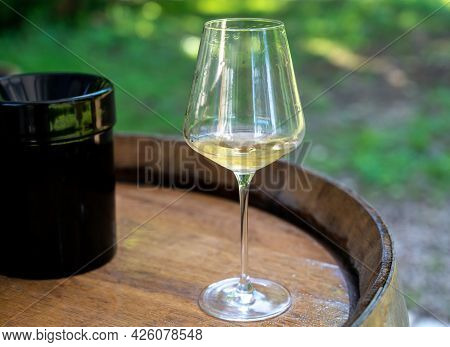 Tasting Of Dry Burgundy White Wine Made From Chardonnay Grapes, Wine Tourisme To Burgundy Cote De Be