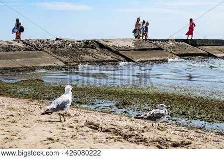 Zaliznyi Port, Ukraine - July 23, 2020: People In Swimsuits Stand On A Concrete Pier In The Dirty Bl