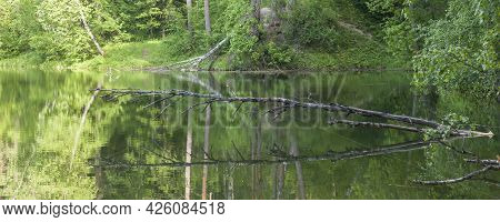 Autumn Landscape. Trees Reflection On Calm Blue Water. Green Forest Reflected In Lake. Blue Backgrou