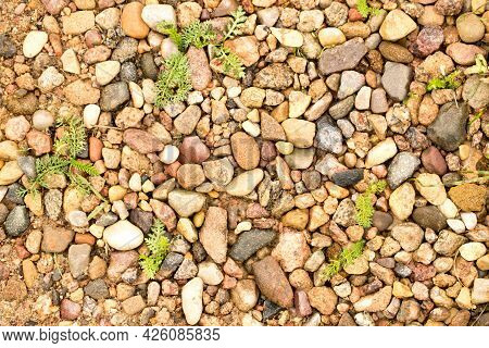 Texture Of Small Pebbles And Sand, Beautiful Small Pebbles