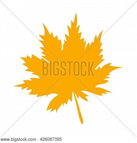 Autumn Botanical Vector Flat Plant Element, Maple. Fall Orange Maple Leaf. Simple Autumn Leaf, Herba