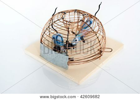 Conceptual: Euro Bills trapped in mouse-trap