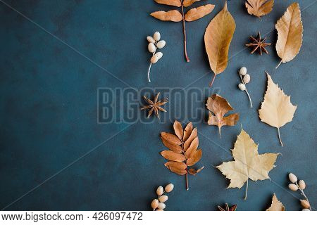 Autumn Background Made Of Dried Leaves Border
