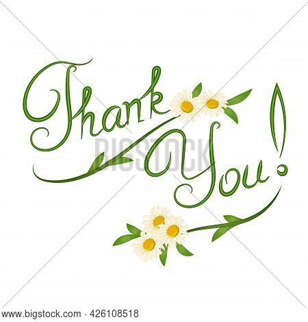 Vector Illustration With The Word Thank You.thank You Word With Floral Decoration On White Backgroun