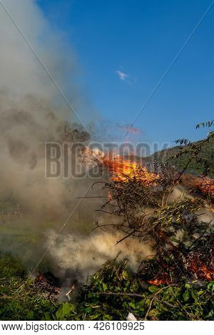 Fiery Flames And Smoke Rising In Air From Burning Tree Branches, Leaves And Dry Cut Grass, Horror Im
