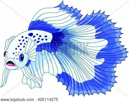 Vector Illustration Of Cartoon Blue And White Siamese Fighting Fish