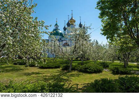 Flowering Trees In The Spaso-yakovlevsky Monastery In The City Of Rostov, Yaroslavl Region.