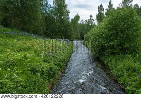 Fast Water In A Narrow Channel Against A Background Of White And Purple Flowers And Green Trees.
