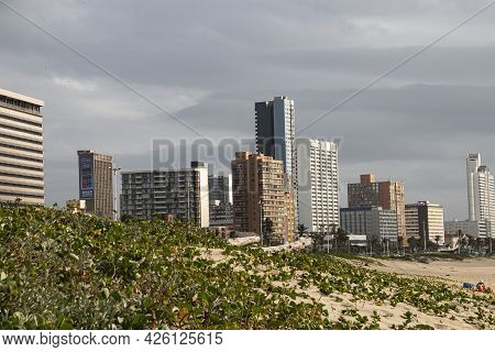 Dune Rehabilitation At Durban With Beachfront Buildings In Background