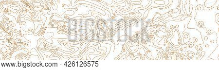 Abstract Vector Topographic Map On White Background
