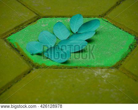Eight Leaves Pair Natural Theme Presentation On Hexagonal Shape Surface.